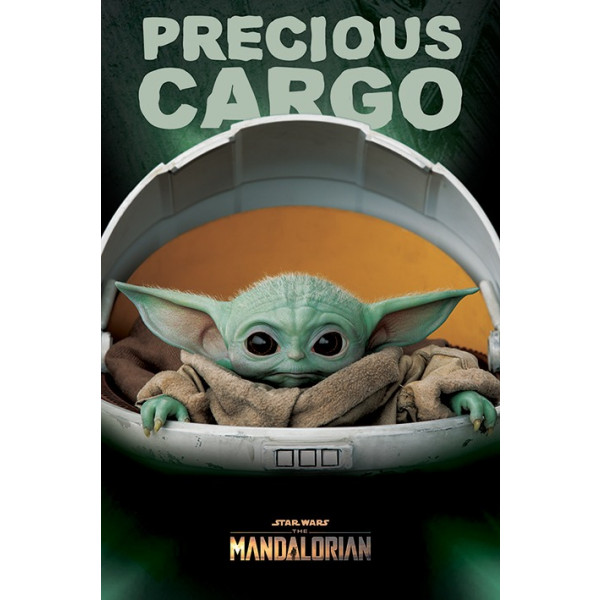 Poster di Star Wars: The Mandalorian (Precious Cargo)