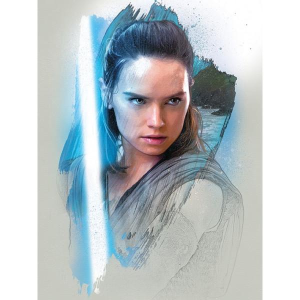Quadro Star Wars The Last Jedi (Rey Brushstroke)