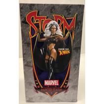 Bowen Designs Classic Storm Painted Statue