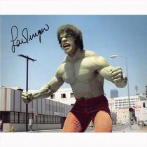 Autografo Lou Ferrigno - The Incredible Hulk Foto 20x25