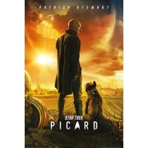 Poster Star Trek Picard (Picard numero uno)