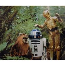 Autografo Star Wars Anthony Daniels 3 -Foto 20x25