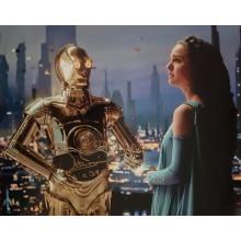 Autografo Star Wars  Anthony Daniels 5 - Foto 20x25