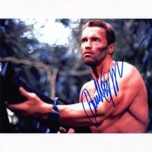 Autografo Arnold Schwarzenegger - Predator Foto 20x25
