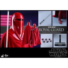 Hot Toys MMS 469 Star Wars VI : ROTJ – Royal Guard