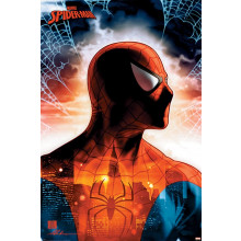 Poster Spider-Man (Protector Of The City)