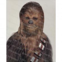Autografo Peter Mayhew Star Wars Foto 20x25