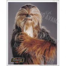 Autografo John Coppinger Star Wars Senatore Wookiee Foto 20x25