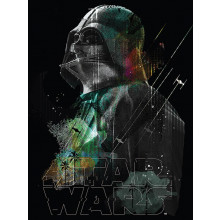 Autografo Brian Muir Quadro Star Wars Darth Vader